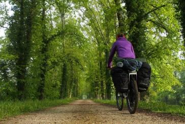 Wirtualne Szlaki Kujawsko-Pomorskie. Pieszo czy rowerem?